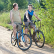 Foto Stock: Father with son on bicycles