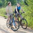 Foto de Stock  : Father with son on bicycles