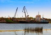 Cargoship unloading on the river Luga. Russi — Stock Photo