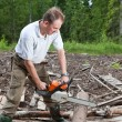 Min wood saws tree chain saw — Stock Photo #23997829