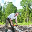 Stockfoto: Min wood saws tree chain saw