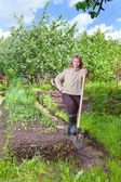 Man digs up a garden-bed with the first sprouts on a summer cottag — Stock Photo
