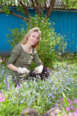 Young pretty woman looks after behind plants in the garden — Stock Photo