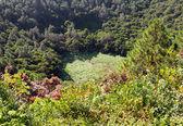 Famous Mauritius tourist place- volcano crater Trou aux Cerf — Stock Photo