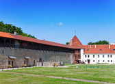 Estonia. Narva. Ancient fortress — Stock Photo