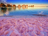 Beach with pink sand and lodges on water — Stock Photo