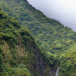 Stock Photo: Mountain in fog and falls. Polynesia. Tahiti