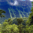 Stock Photo: Tahiti. road in mountains. Tropical nature.