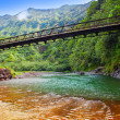 Tahiti. The bridge through the river in mountains — Stock Photo