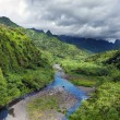 Stock Photo: Tahiti.Tropical nature and mountain river