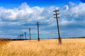 Old wooden poles - the line of electricity transmissions - in the field — Stockfoto