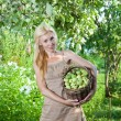 Stock Photo: Young attractive womwith basket of apples in garden.