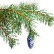 Stock Photo: New Year's balls on branches of a Christmas tree and gifts