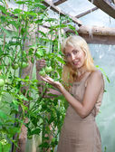 The young attractive woman in a hothouse rejoices to the future crop of tomatoe — Stock Photo