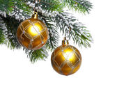 Two yellow New Year's balls and snow-covered branches of a Christmas tree — Foto Stock