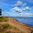 Russia. sandy coast of the Gulf of Finland — Stock Photo