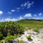 Mauritius, landscape of the island — Stock Photo #32540189