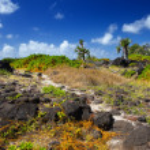 Mauritius, landscape of the island — Stock Photo #32540223