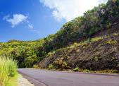 Mauritius. The road in mountains — Stock Photo