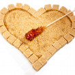 Heart from not refined reed sugar and candy sugar on stick — Stock Photo #33714237