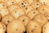 Cookies biscuit with raisin — Foto de Stock
