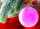 Pink New Year's ball on a branch of a Christmas tree — Stock Photo
