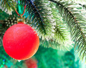 Red New Year's ball on a branch of a Christmas tre — Stok fotoğraf