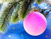 Pink New Year's balls on a branch of a Christmas tree — Foto Stock