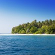 The island with palm trees in the ocean — Stock Photo #36025461