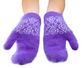 Hands in fluffy lilac mittens — Stock Photo