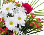 Bright bouquet with chamomiles and rose — Stockfoto