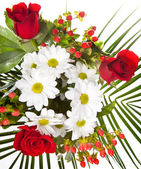 Bright bouquet with chamomiles and rose — Stock Photo