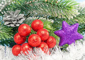 Decorative New Year's scenery - berries and a snowflake — Stock Photo