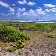 Mauritius. Stony landscape of the island — Stock Photo