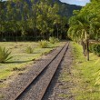 Stock Photo: Ancient narrow gage railwayin tropical park, Mauritius