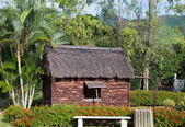 Ancient wooden hut in park - so lived on Mauritius earlie — Stock Photo