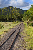 The ancient narrow gage railwayin tropical park, Mauritius — Stock Photo