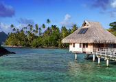 Typical Polynesian landscape - seacoast with palm trees and small houses on water — Stock Photo