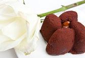 Chocolate cake and white rose — Stock Photo
