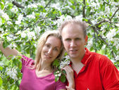 Happy man and the woman in blossoming apple-tree — Stock Photo