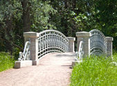 The small  bridge in park — Stock Photo