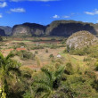 Cuba. Tropical nature of Vinales Valley. — Stock Photo