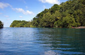 Jamaica. Sea lagoon and tropical vegetation — Stock Photo