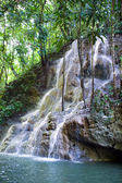 Jamaica. The small river waterfal — Stock Photo