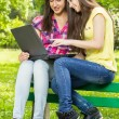 Smiling female students using laptop — Stock Photo #26079161