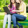 Smiling female students using laptop — Stock Photo #26079187