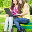 Smiling female students using laptop — Stock Photo