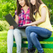 Smiling female students using laptop — Stock Photo #26079295