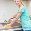 Beautiful housewife cleaning in the kitchen — Stock Photo #27150369