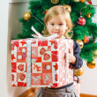 Little Girl Holding a Christmas Gift — Stock Photo #40486397
